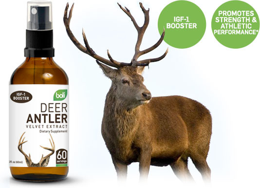 Wholesale Private Label Deer Antler Velvet Extract Spray