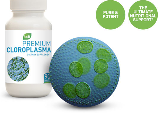 Wholesale & Private Label Chloroplasma
