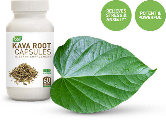 kava root capsules wholesale and private label