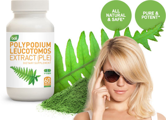 Wholesale private label polypodium leucotomos extract (PLE)