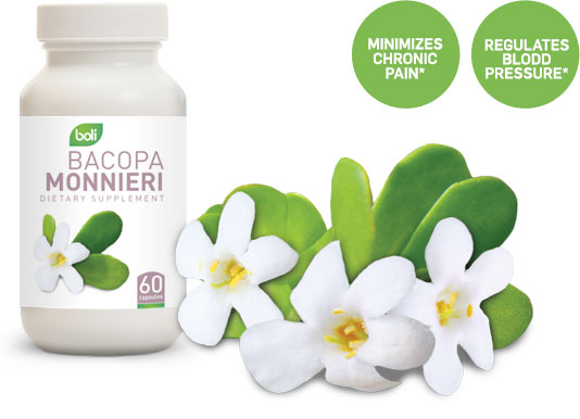 bacopa monnieri wholesale and private label