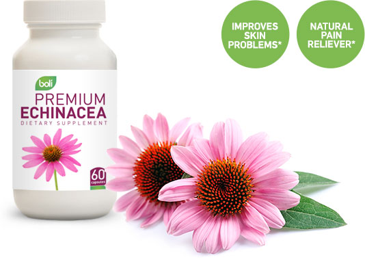 echinacea wholesale and private label
