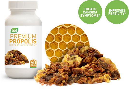 propolis wholesale and private label