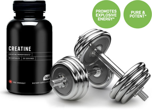 creatine wholesale and private label