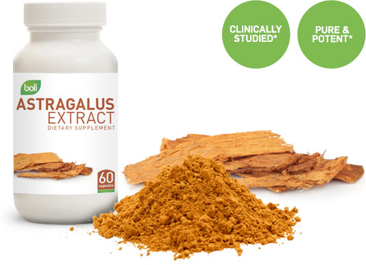 astragalus wholesale and private label