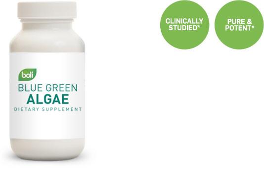 Blue Green Algae Supplier