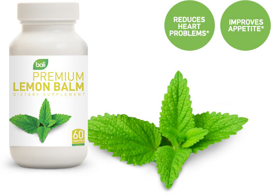 lemon balm wholesale and private label