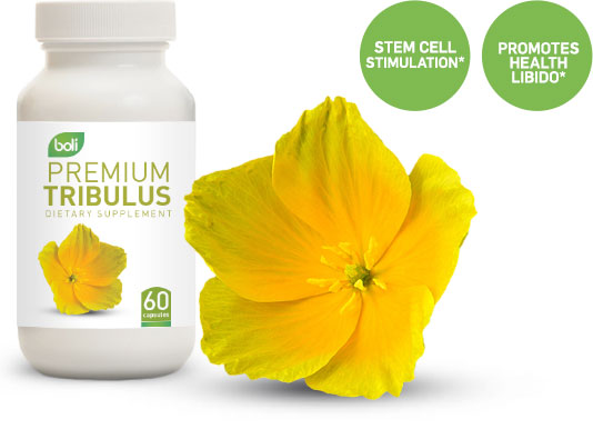 tribulus wholesale and private label